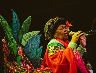 Highlights of Sunday @ Womad 2015